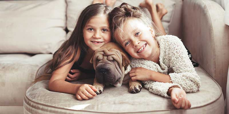 Family and Pet Safe Cleaning